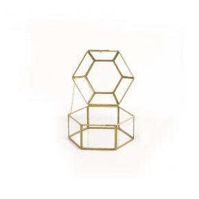 JEWL BOX TERRARING CLEAR GOLD D15X10 CSG